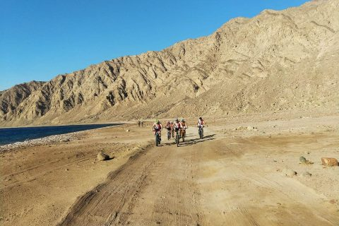Sinai MTB Tour bici